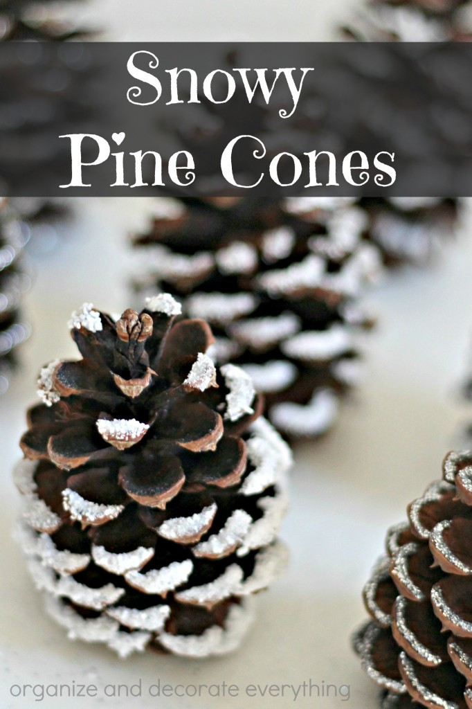 Snowy Pine Cones 4 Different Ways