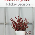 Tips for a Stress Free Holiday Season