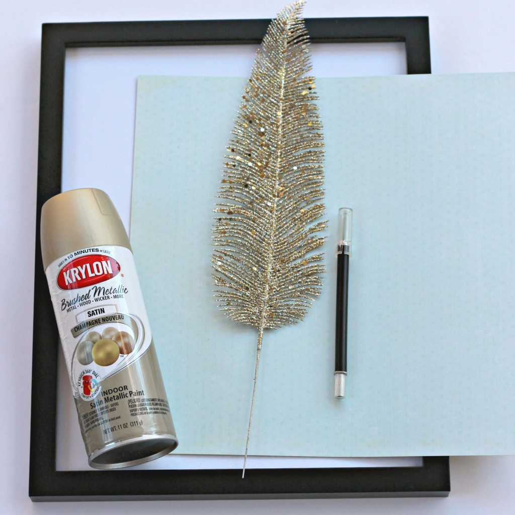framed-feather-supplies