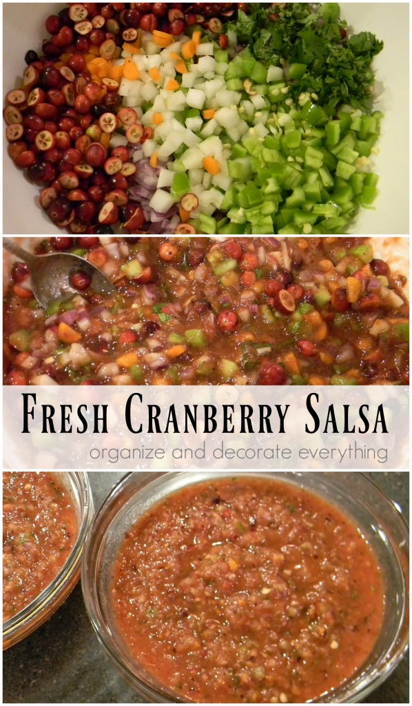 Fresh Cranberry Salsa - Organize and Decorate Everything