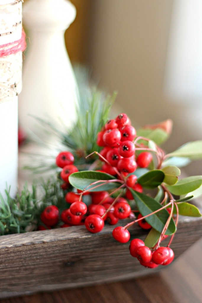 thrifty-christmas-decorating-berries