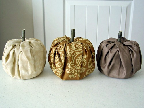pumpkins with stems