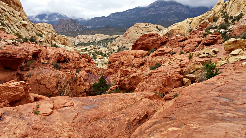 Red Rock Canyon 3
