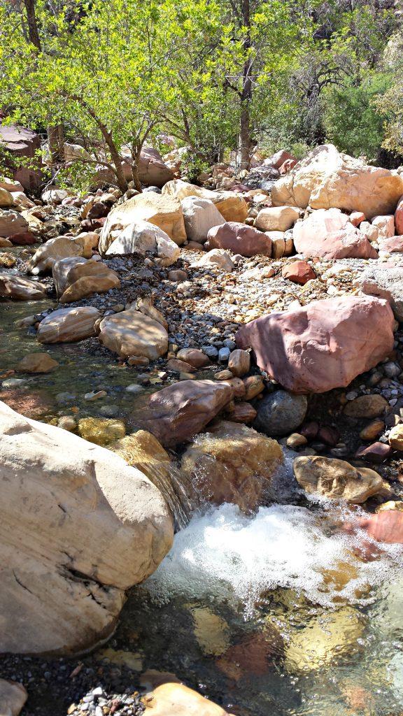 Red Rock Canyon Pine Creek