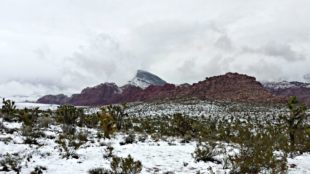 Red Rock Canyon in snow