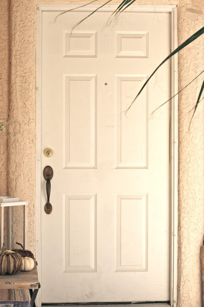How to Paint a Front Door before photo