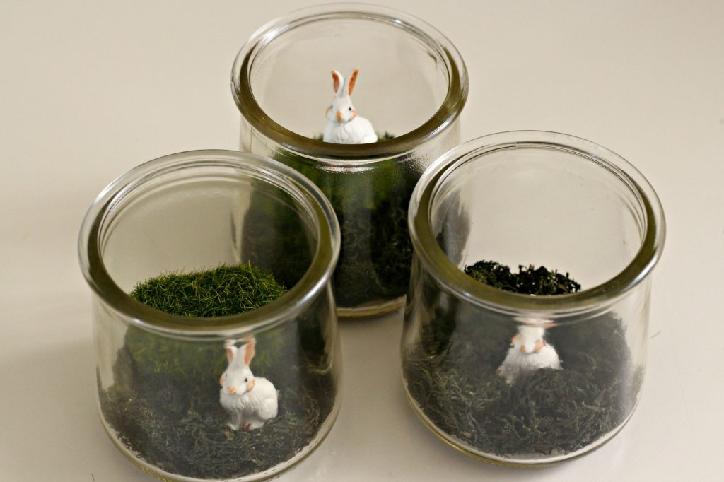 Mini Bunny Terrarium bunnies added