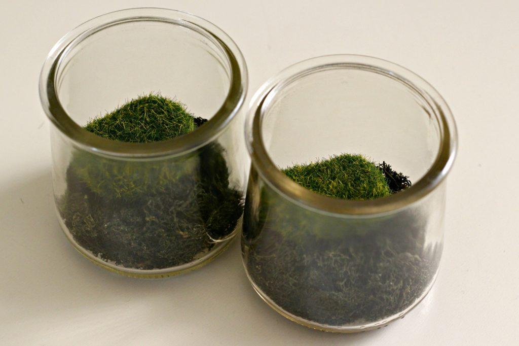 Mini Bunny Terrarium moss rocks