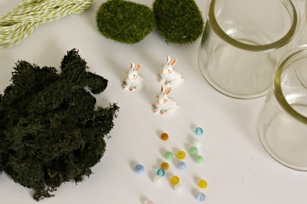 Mini Bunny Terrarium supplies