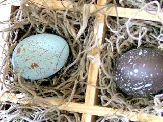 Speckled Eggs DIY 4