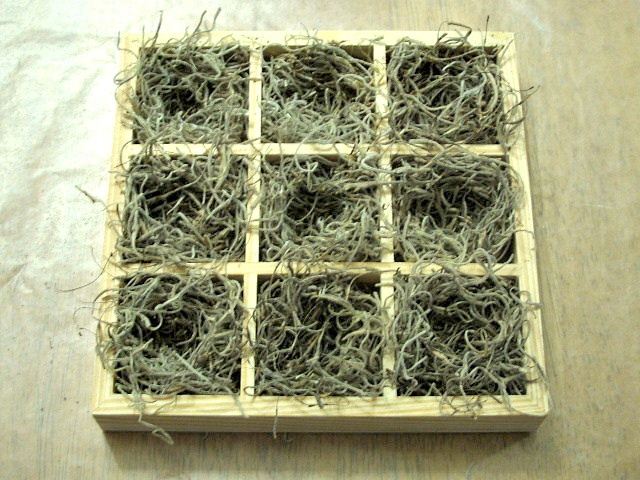 Speckled Eggs DIY bird nests