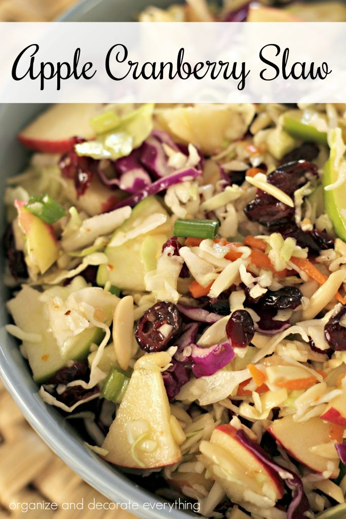 Apple Cranberry Slaw recipe 1