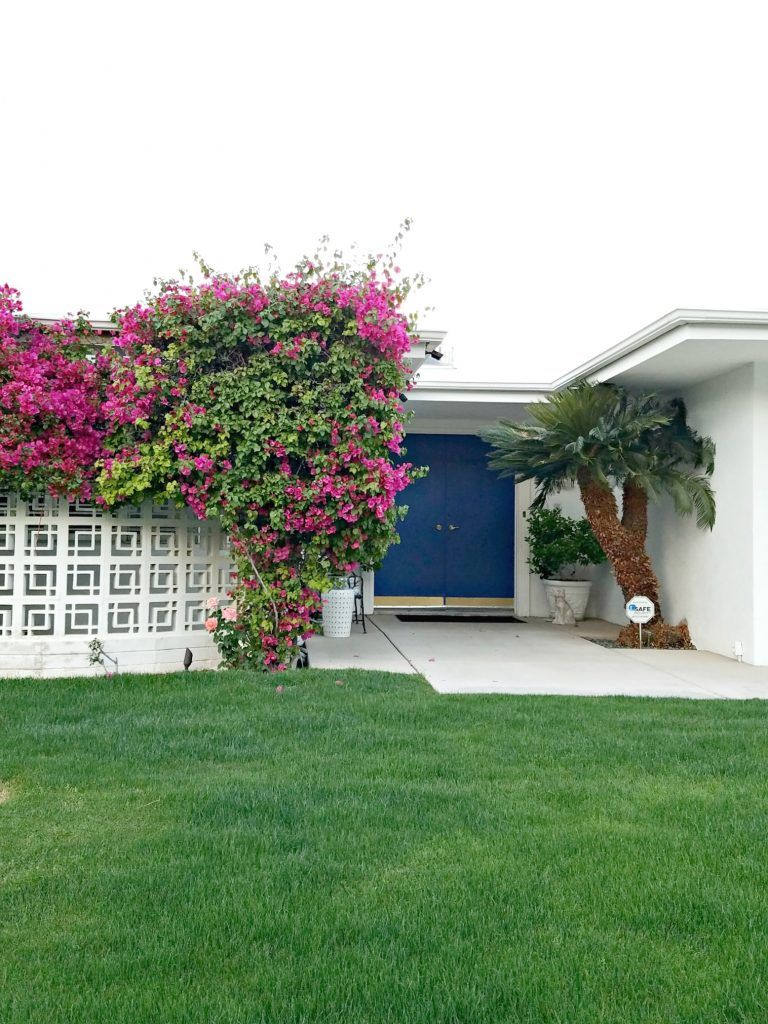 Palm Springs Colorful Doors Blue 4