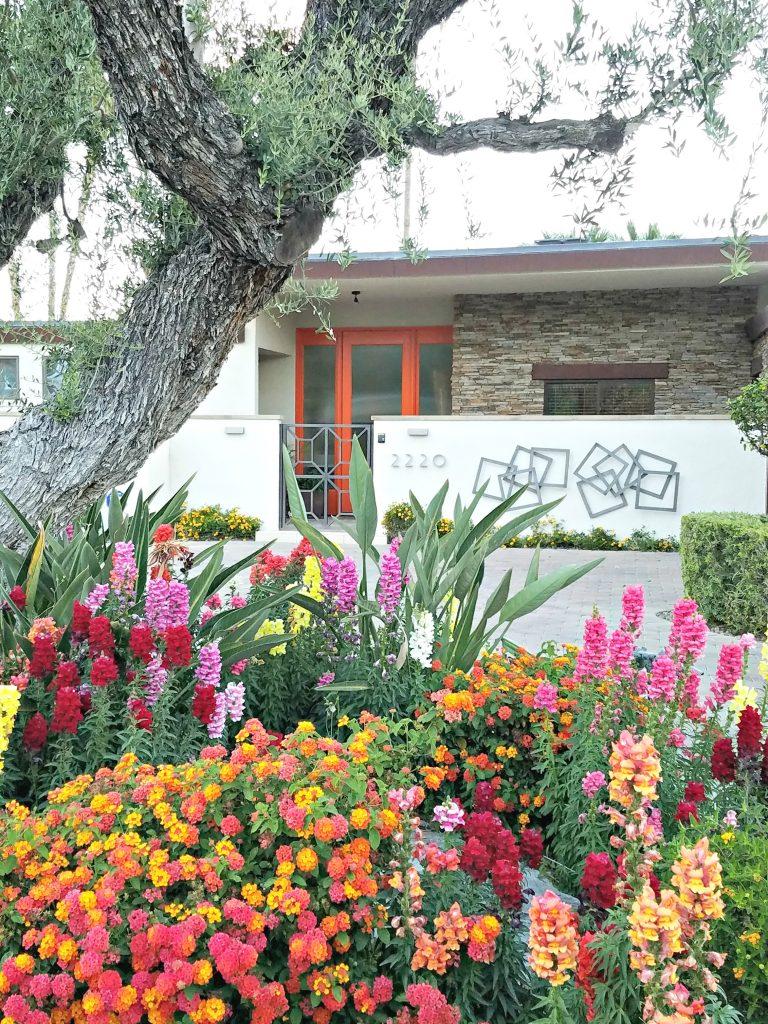 Palm Springs Colorful Doors Orange 3