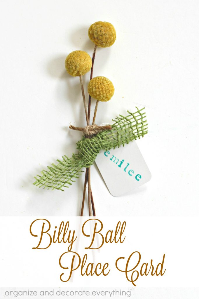 Billy Ball place cards perfect for a beautifully set table