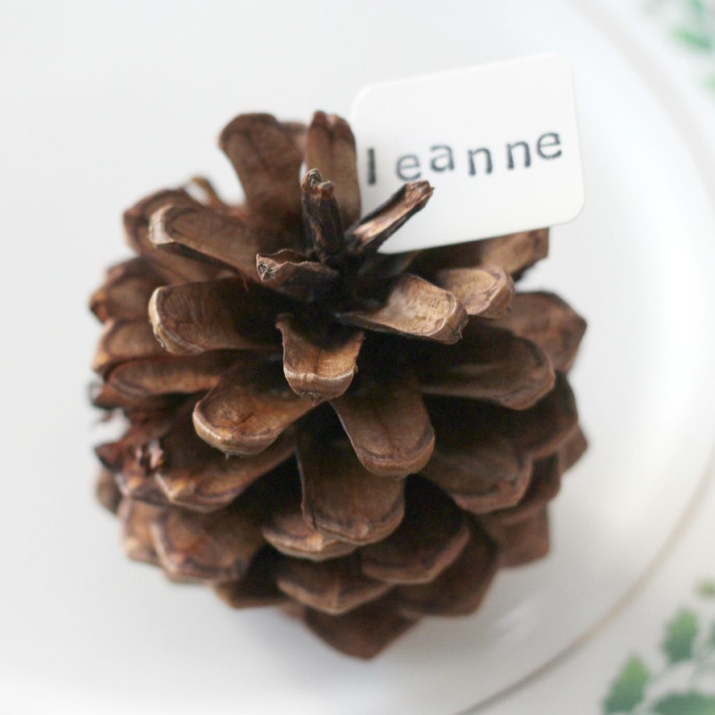 pinecone place cards natural