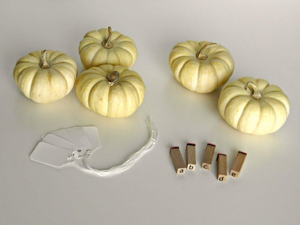 mini pumpkin place cards supplies