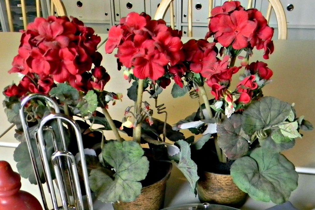 February decluttering flowers